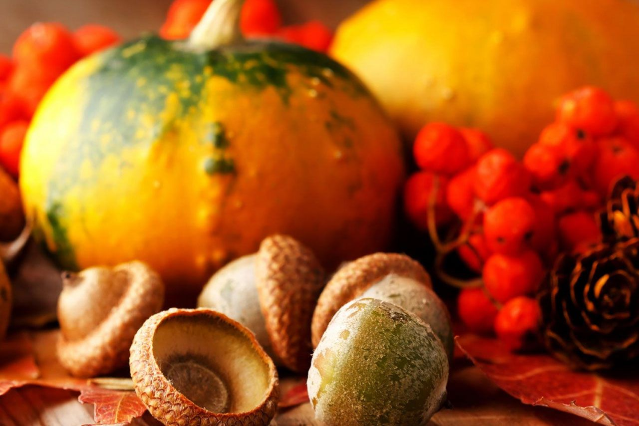 thanksgiving pumpkins wallpaper a7f8ad79173c4750be854ed16f464221