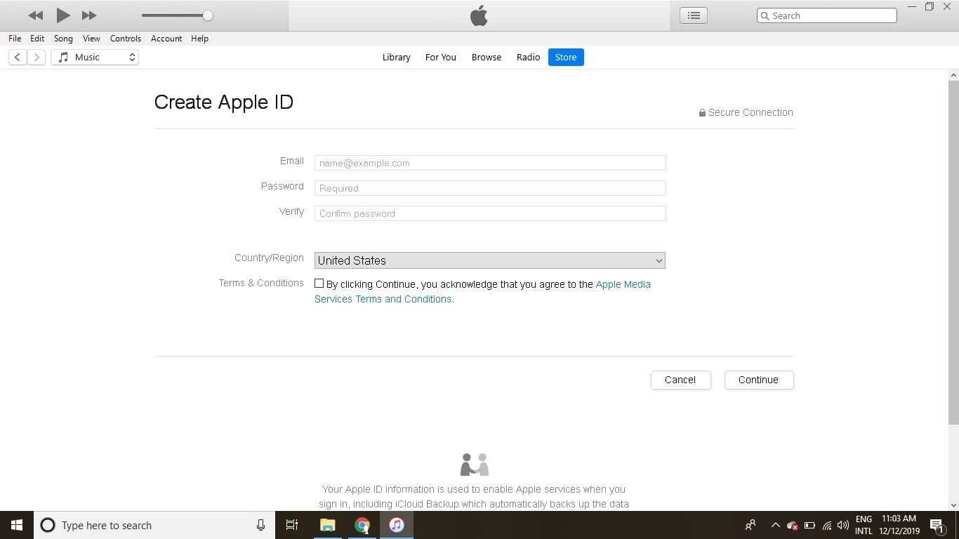 Provide the requested information and agree to the Apple Terms and Conditions, then select Continue.