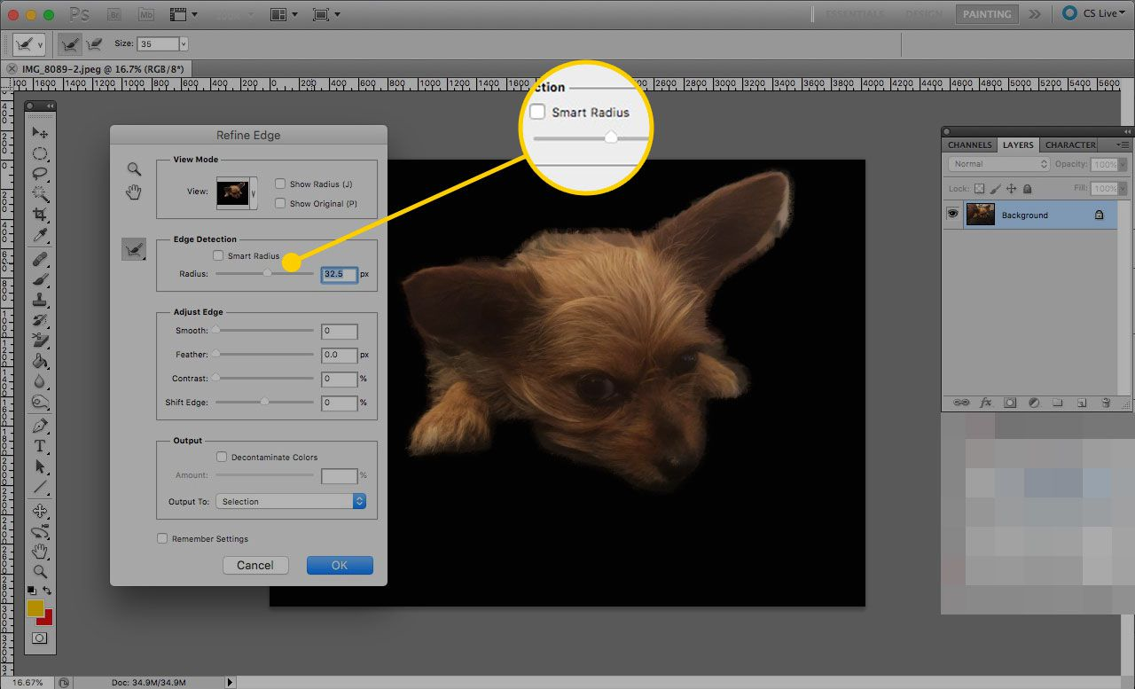 Refine Edge window in Photoshop with the Smart Radius section highlighted