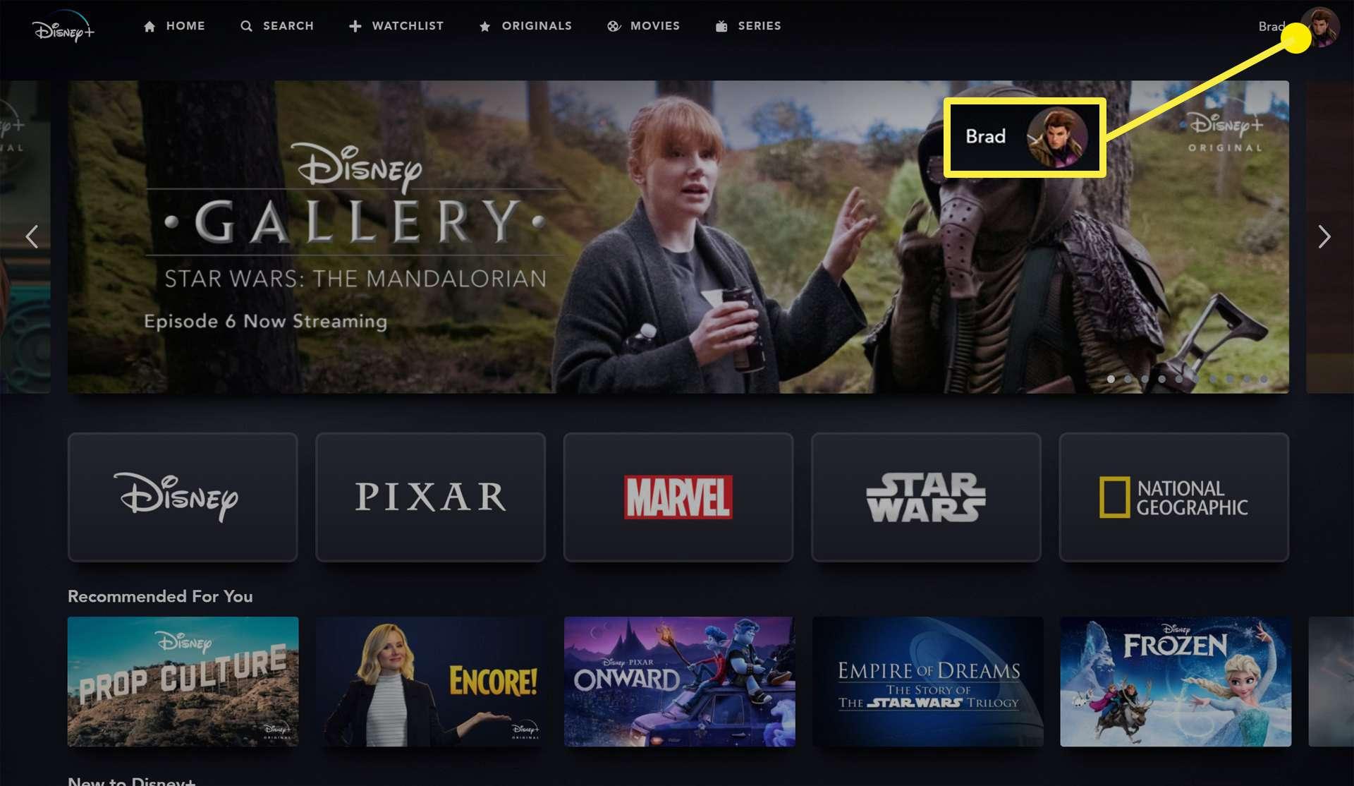 Disney Plus website.