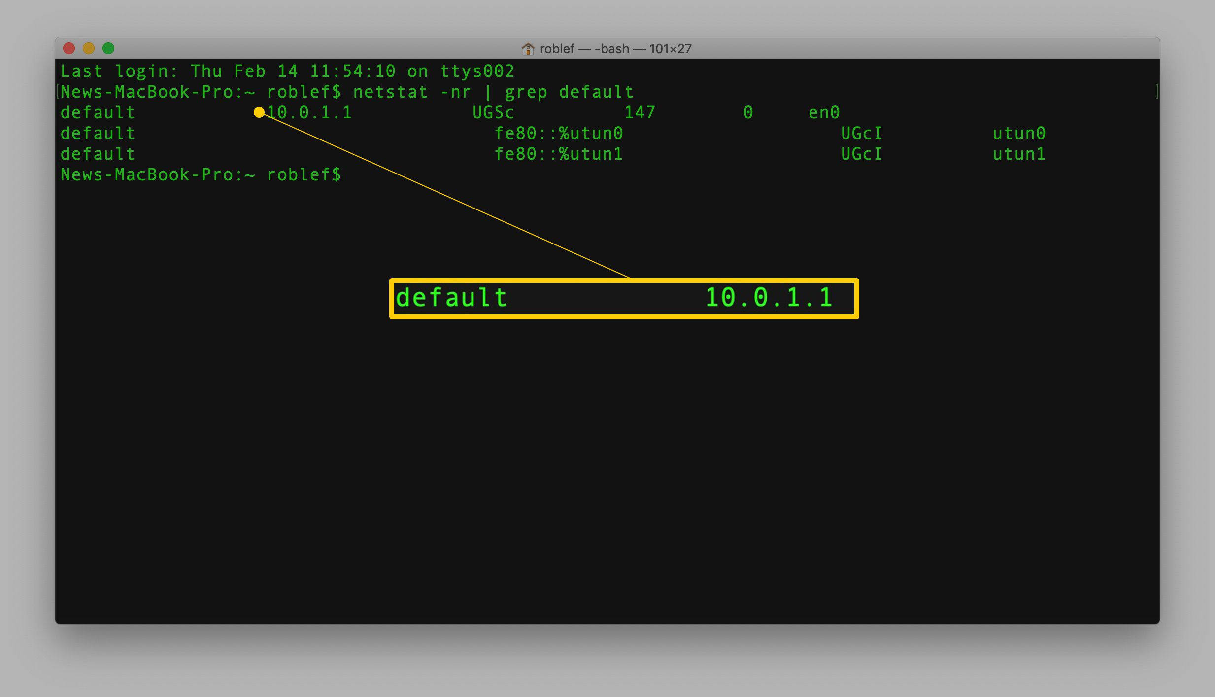 netstat command in Terminal in macOS with default result