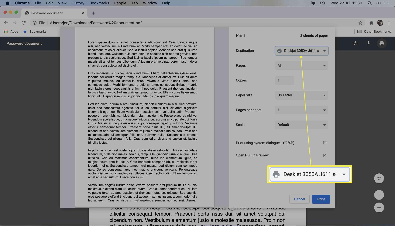Google Chrome print dialog with Destination highlighted