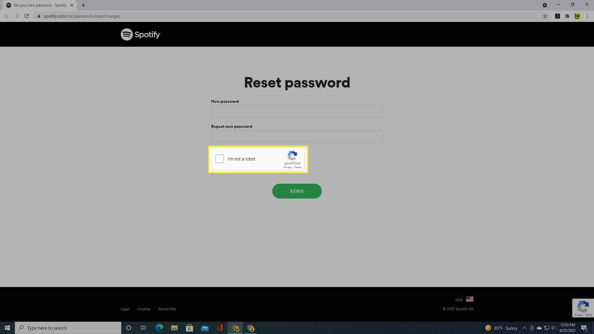 Selecting the Captcha box to reset the password.