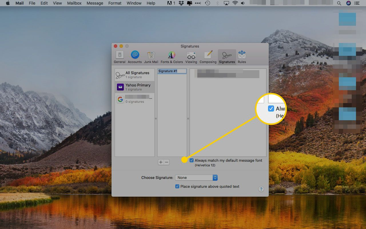 Signatures window in Apple Mail with the