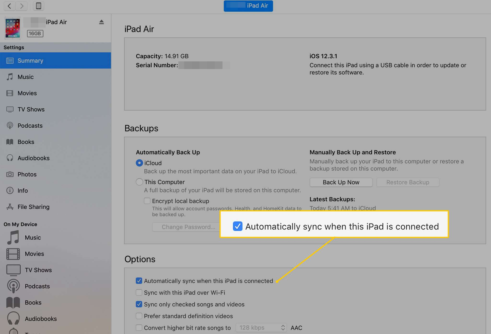 Automatically sync when this iPad is connected checkbox in iTunes