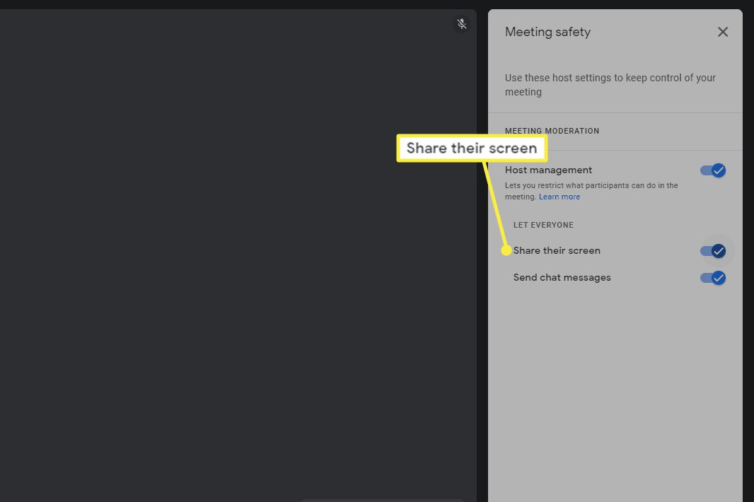 Share their screen highlighted in Google Meet safety controls