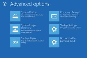 Screenshot of the Advanced Options Menu in Windows 10