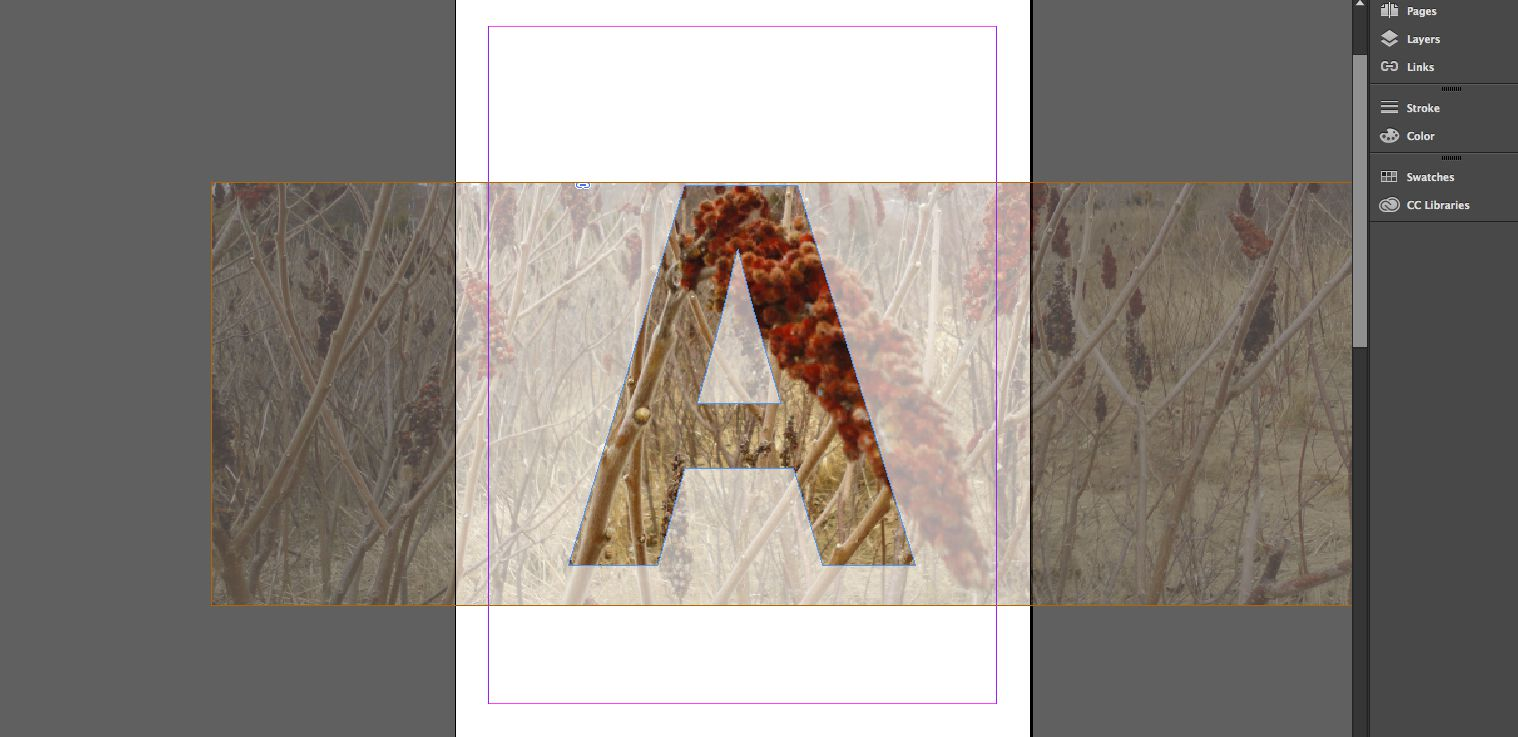 Instead of a solid colour, an image is used as the fill for the letterform.