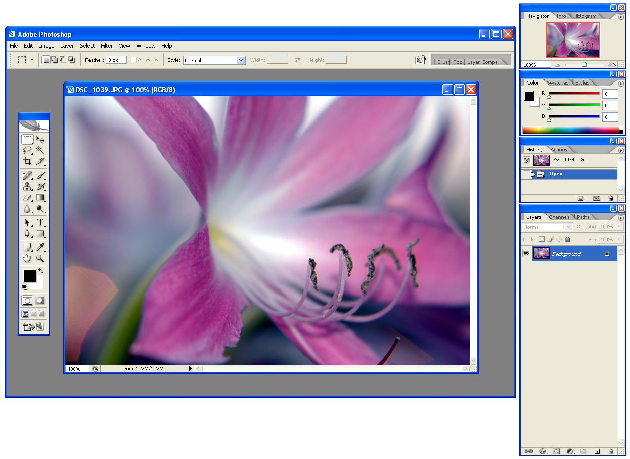 Adobe Photoshop CS2 in Windows XP