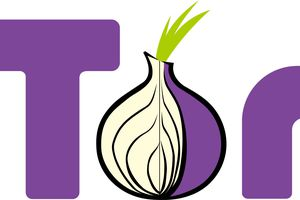 Tor logo with onion
