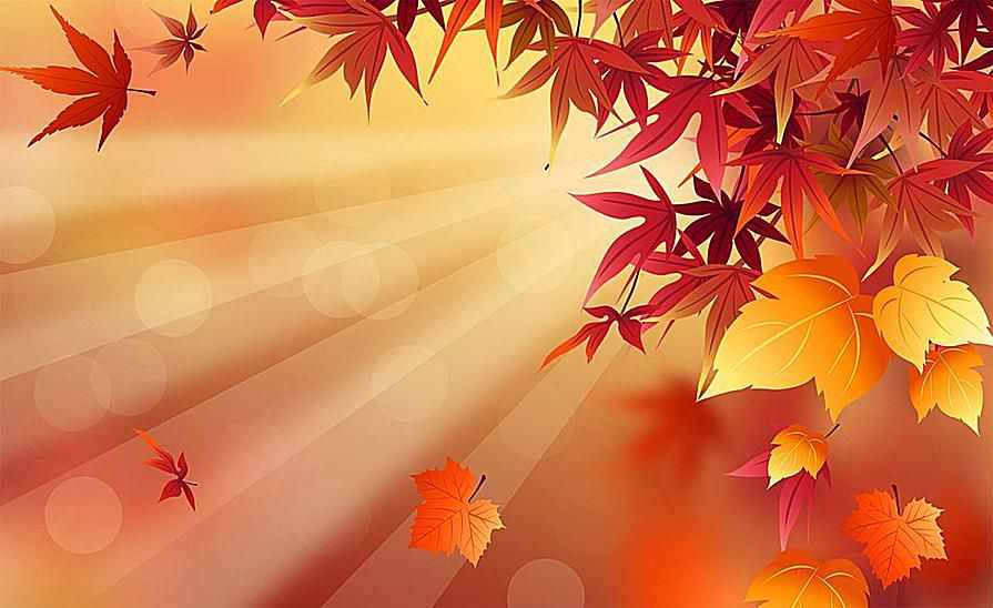 41 Best Free Fall Wallpapers And Backgrounds