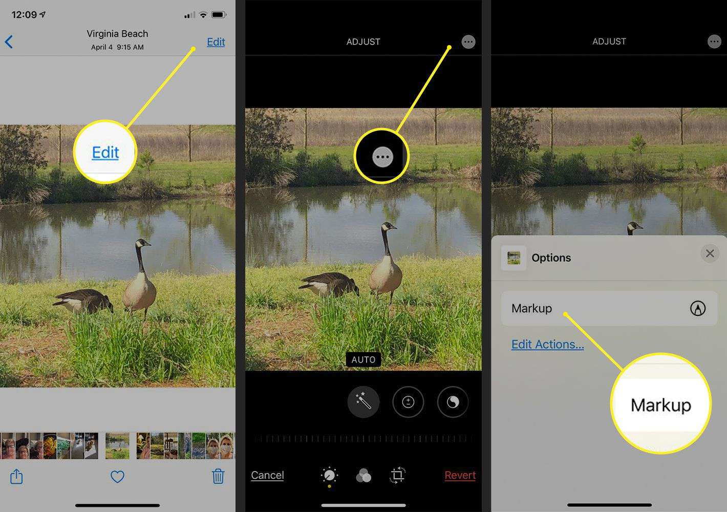 How To Add Text To Photos On Ios Android Pc And Mac
