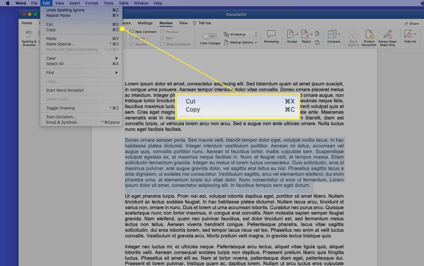 Word document on a Mac with the Cut and Copy commands highlighted
