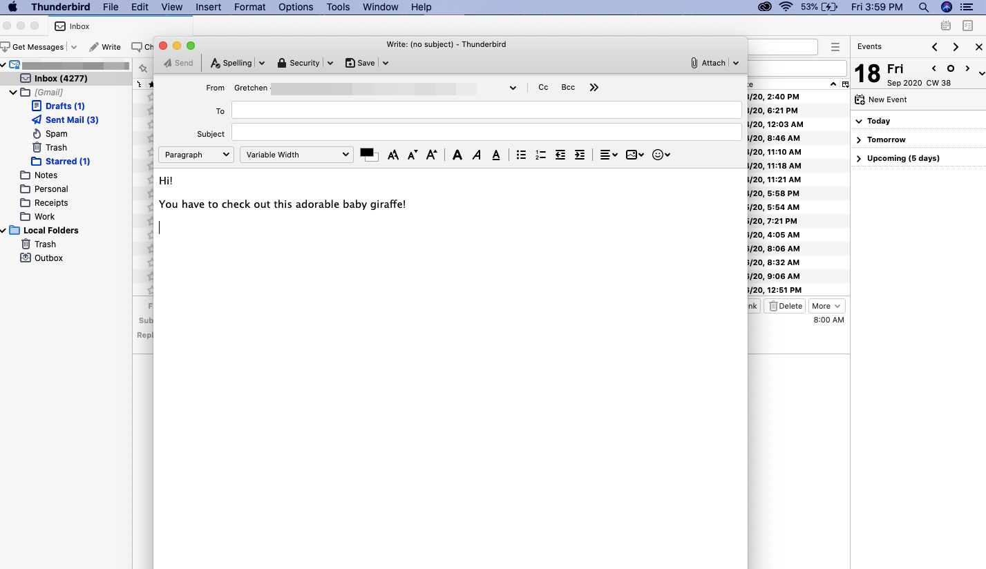 Open a new Thunderbird email message and write your text.