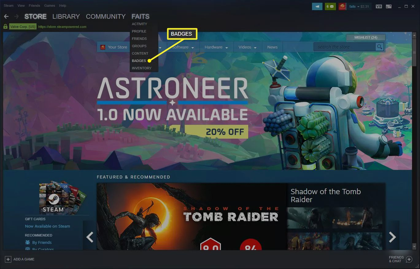 Steam menu with Badges selected