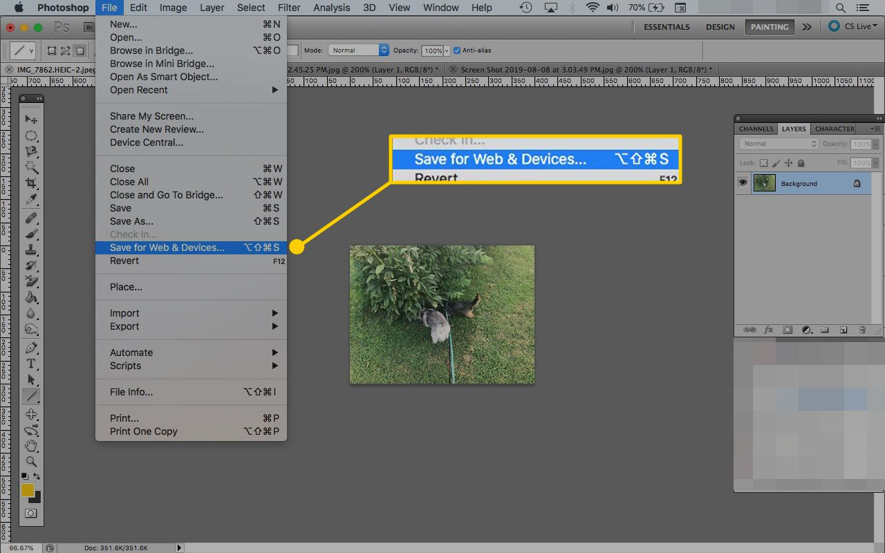 An image open in Photoshop with the Save for Web and Devices menu item highlighted
