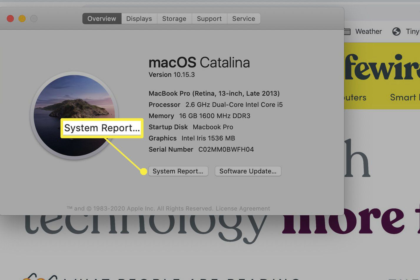 macOS System Report