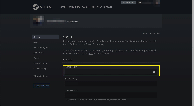 The Profile Name field in a Steam profile