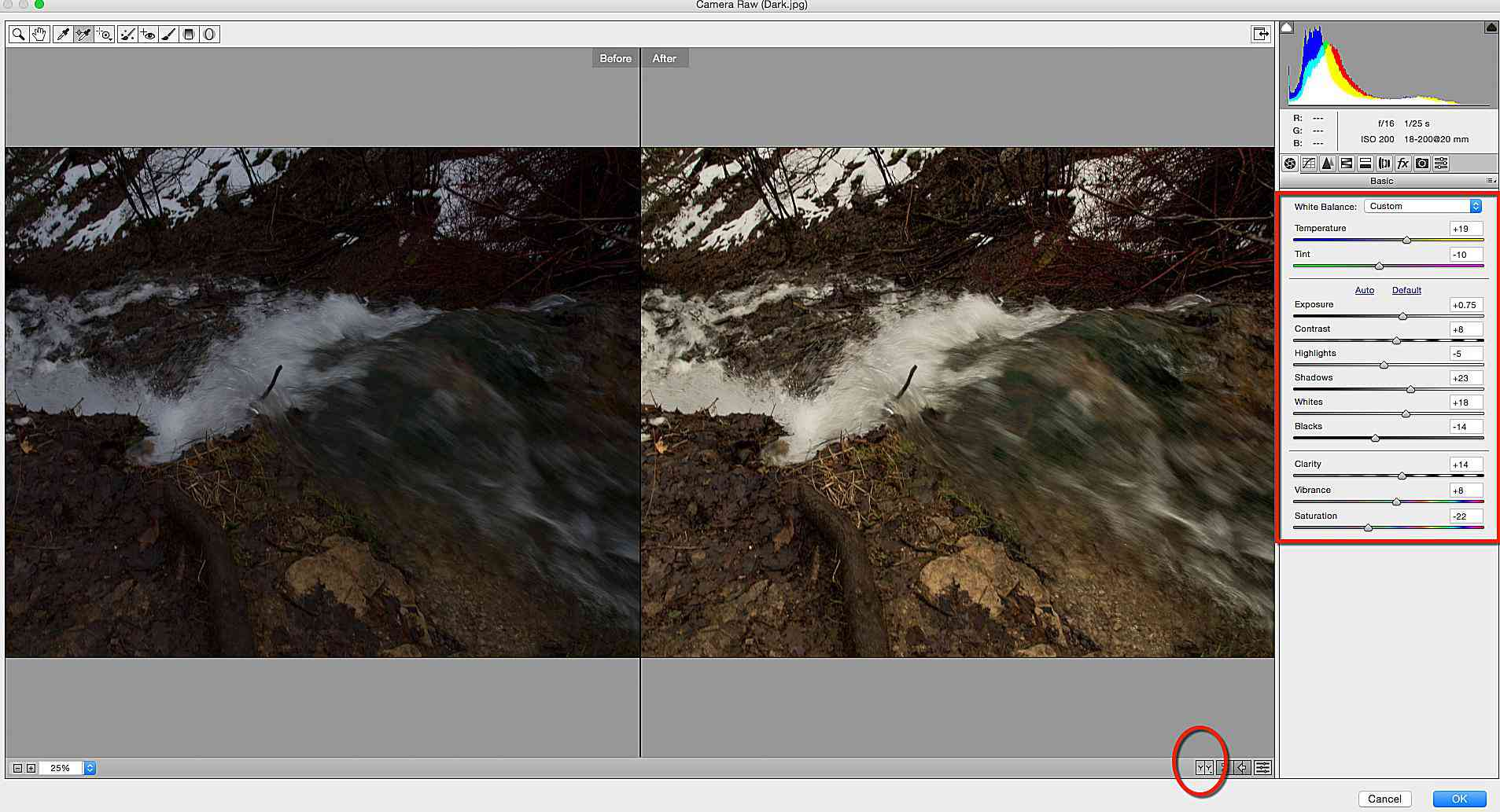 how to use camera raw in photoshop