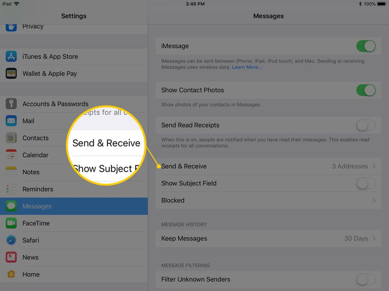 Screenshot of Send & Receive in iPad/iOS Settings app
