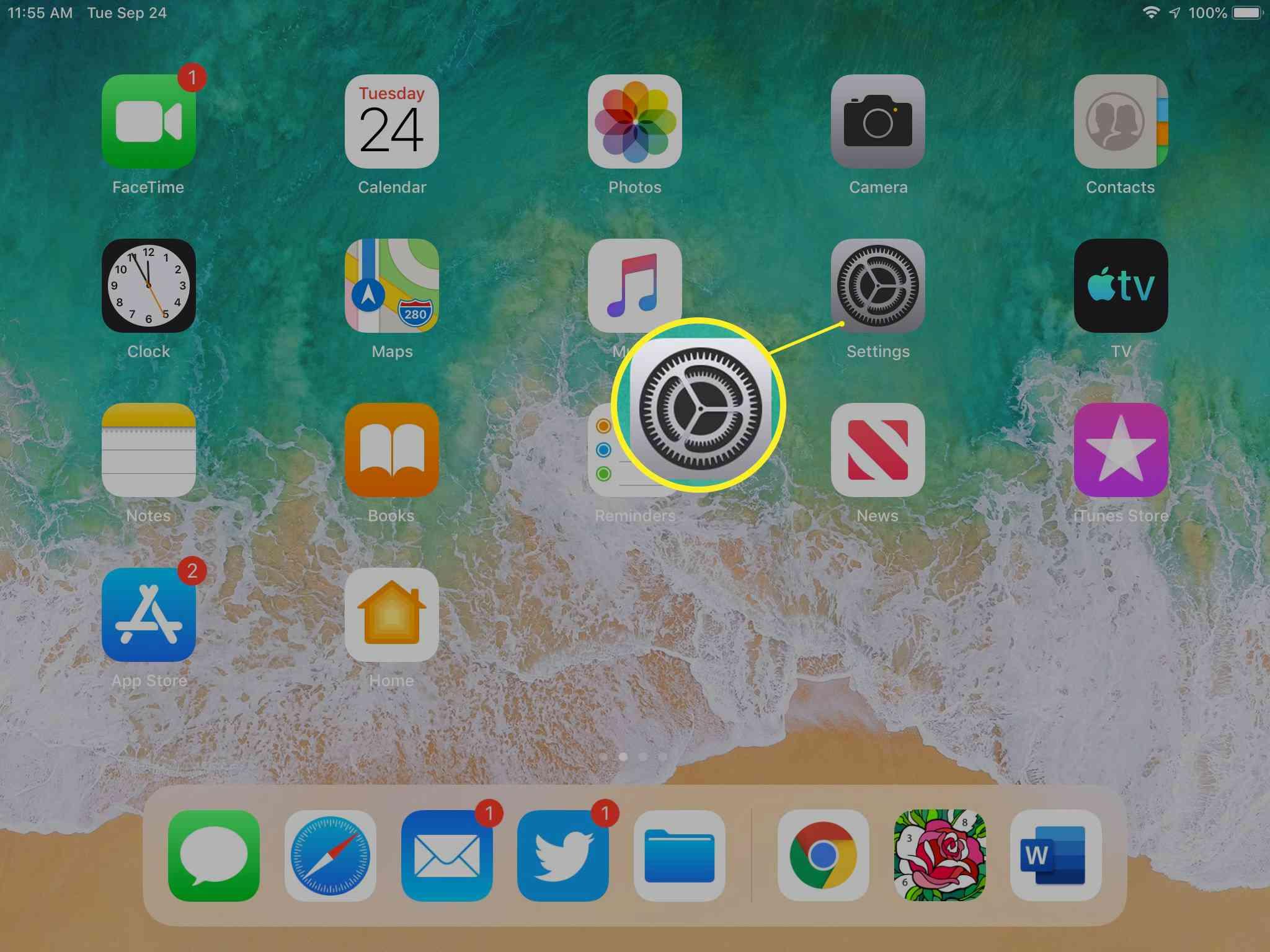 iPad Settings icon