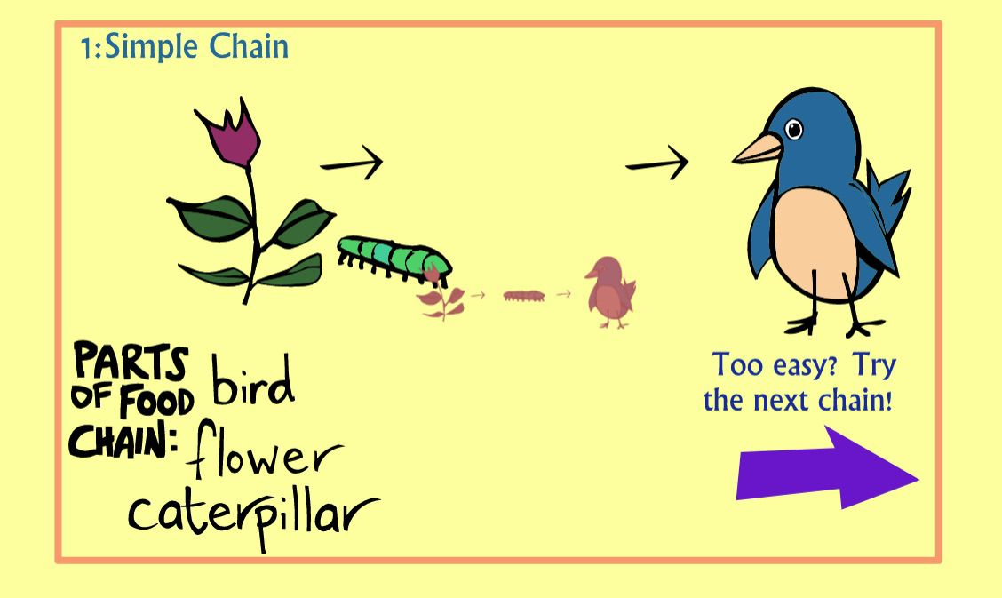 The Food Chain game for kids for Earth Day
