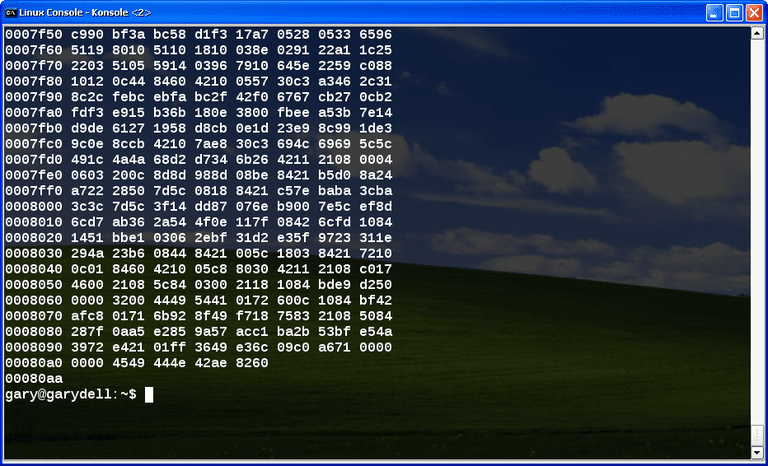 Hexdump shown on the Windows command shell