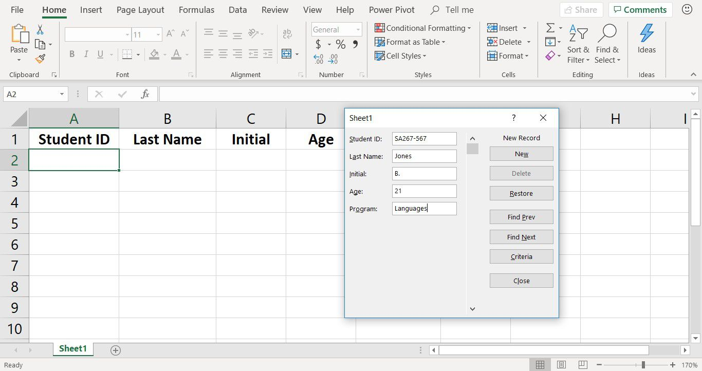 A screenshot showing records added to an Excel Data Entry Form