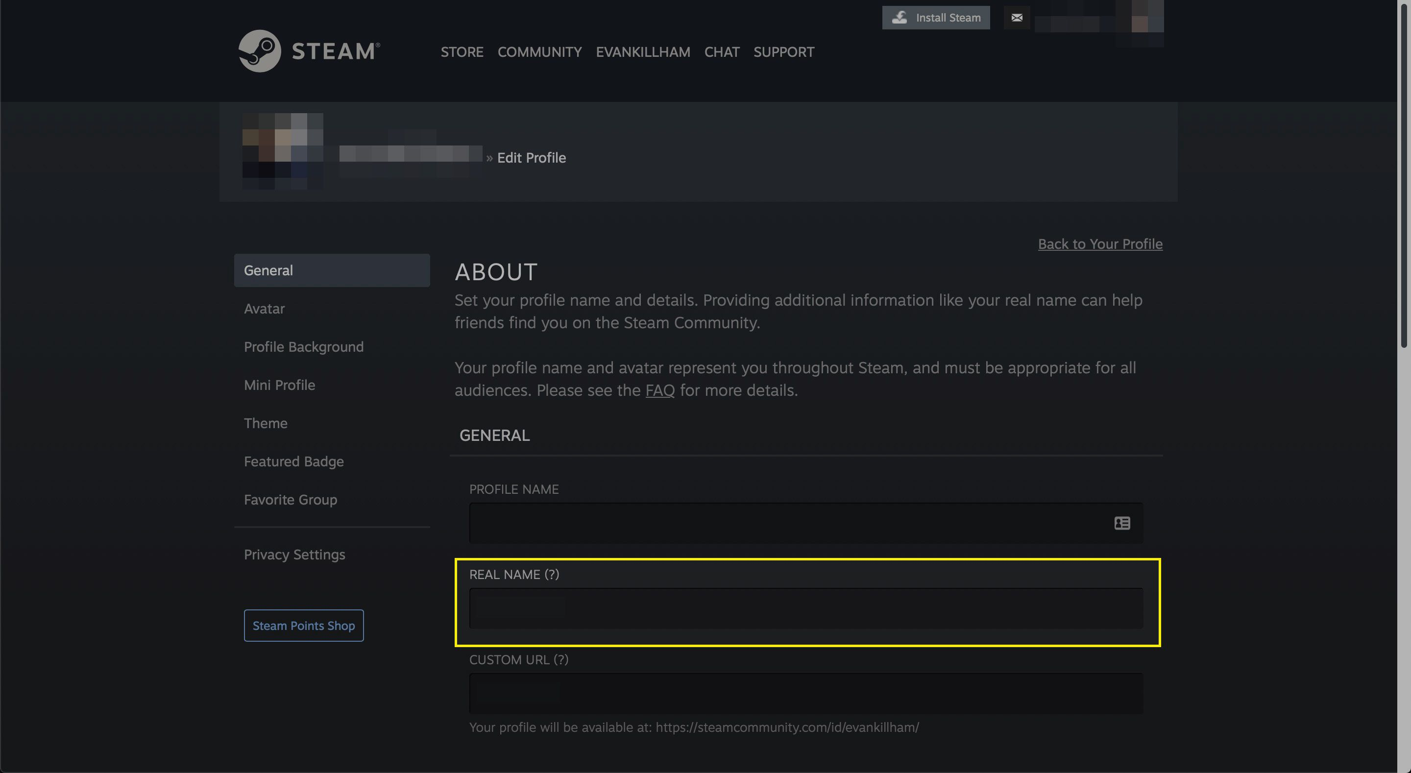The Real Name field in a Steam profile