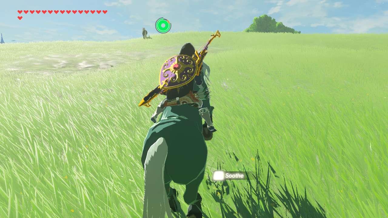 Taming a wild horse in Zelda: Breath of the Wild.