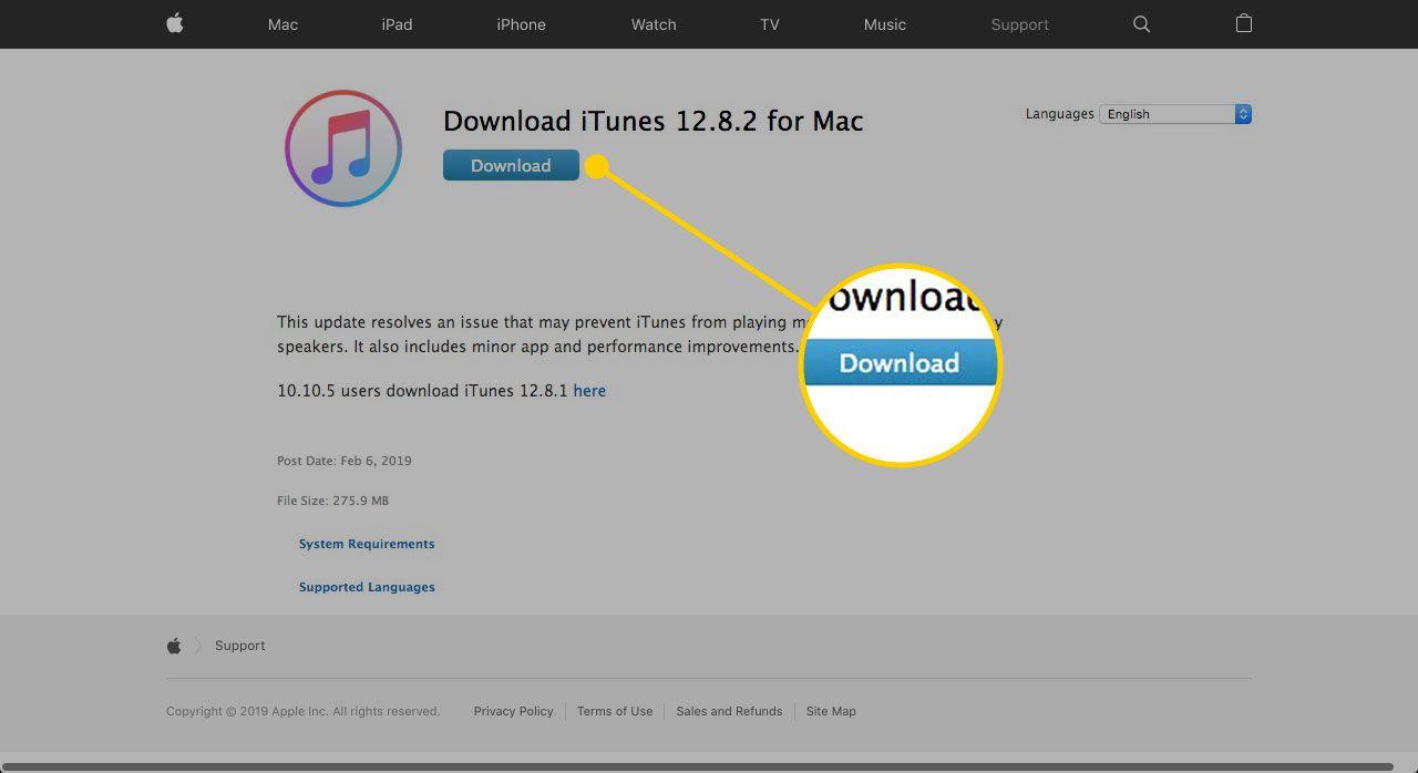 Itunes Download 8