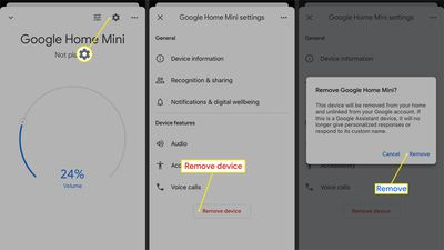 Process for removing a device from the Google Home app