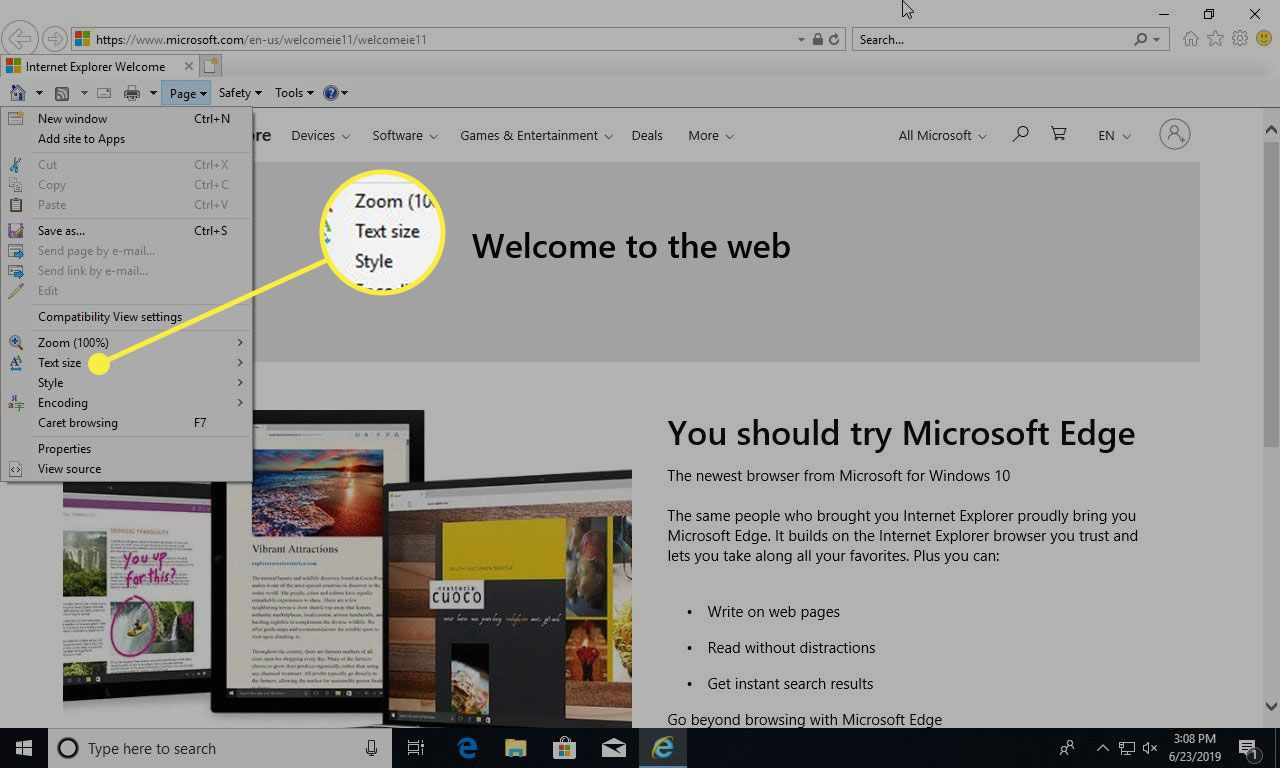A screenshot of Internet Explorer with the Text Size menu option highlighted