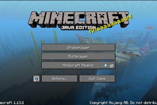 Add Minecraft Skins