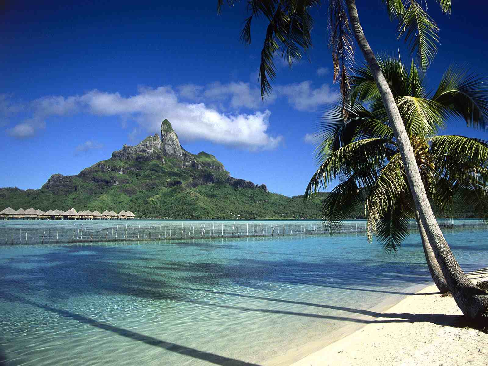 A Beach Scene In Bora