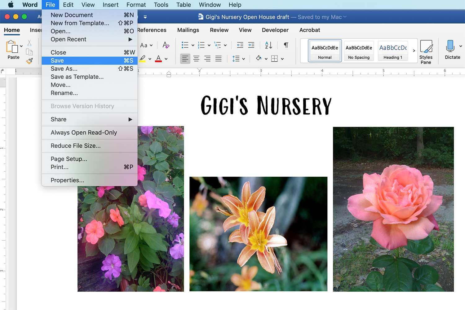 Microsoft Word showing a document with color images