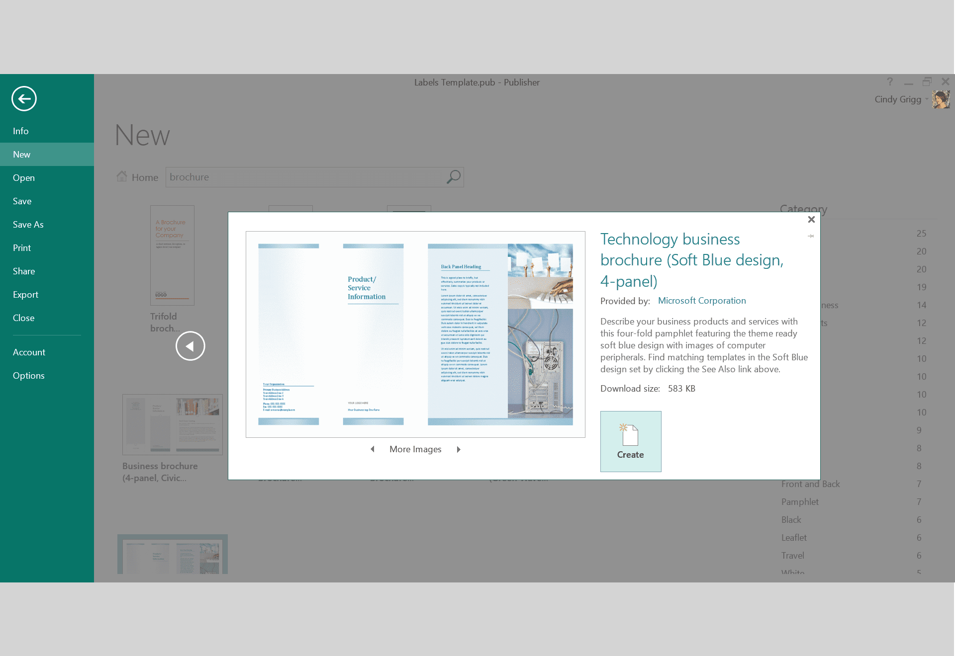 microsoft publisher design templates