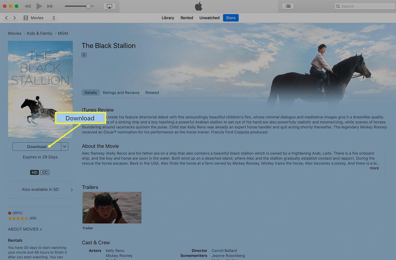 Movie download screen in iTunes