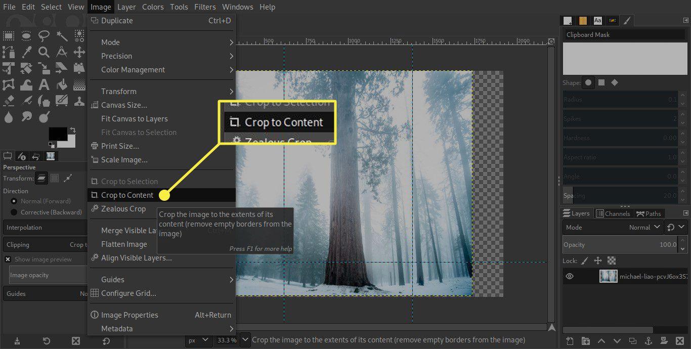 A screenshot of GIMP with the