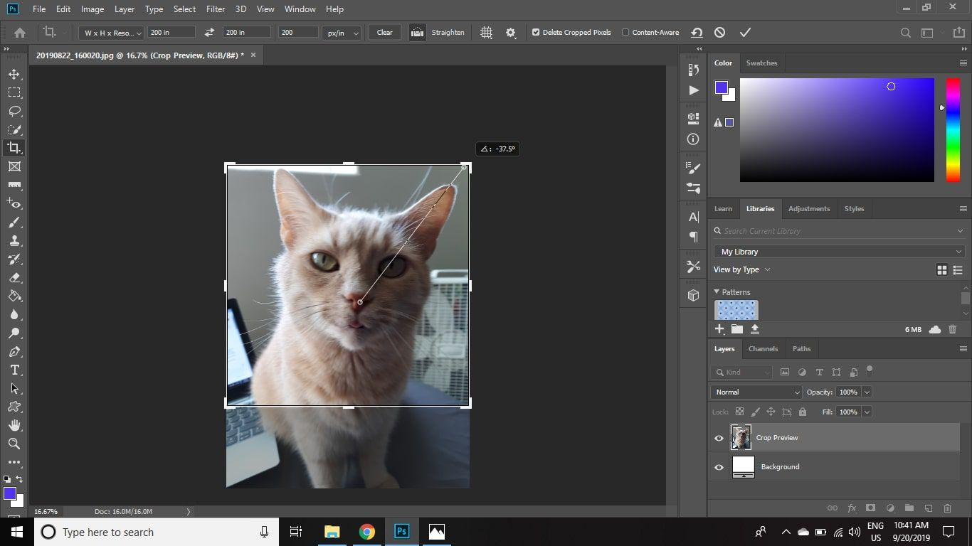 Click and drag to draw a straight line at an angle to the edge of the image.