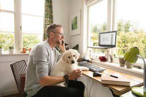 Man working at computer with Golden Retriever puppy on his knee