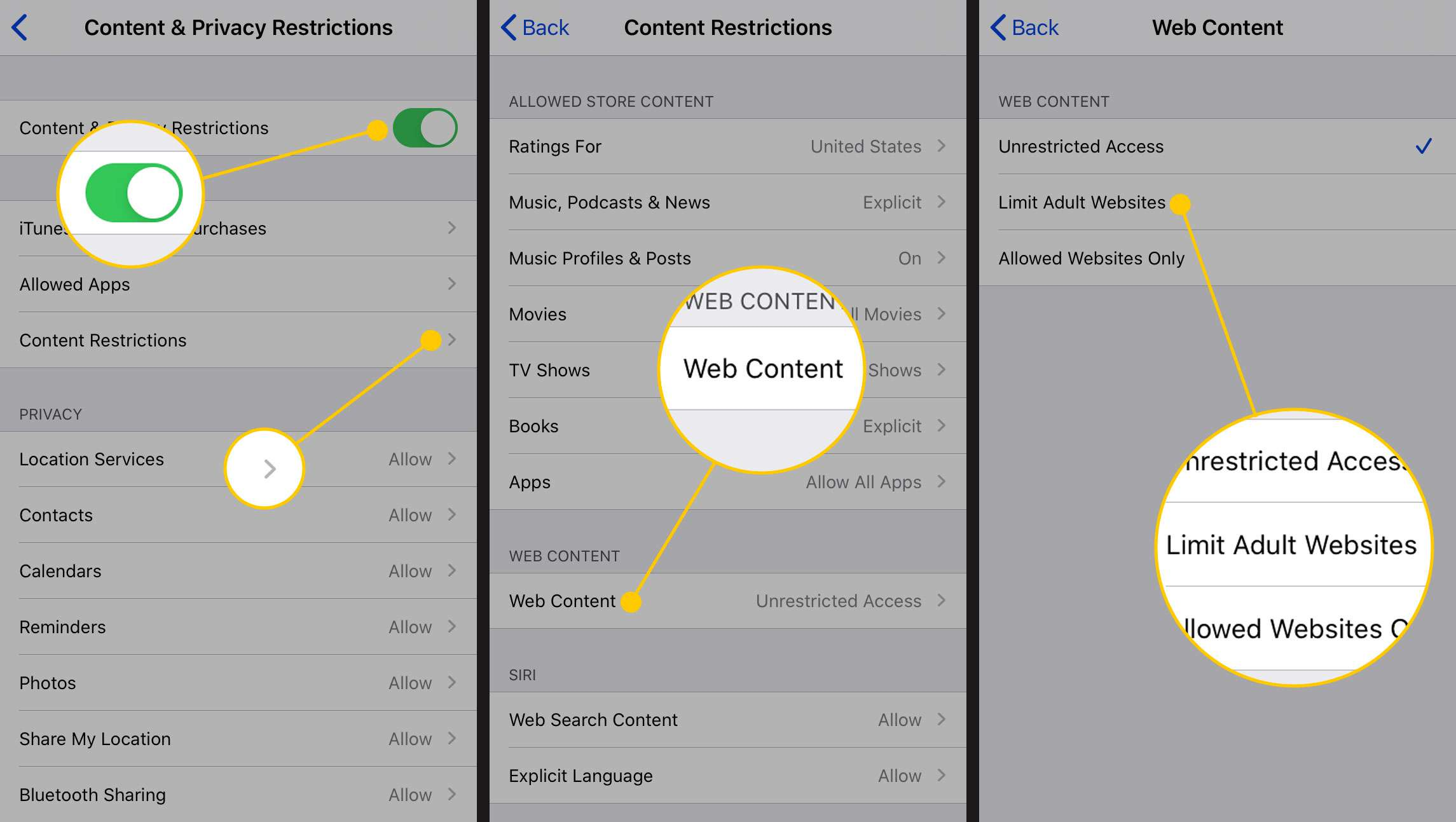 Content Restrictions, Web Content, and Limit Adult Websites options in iOS Settings