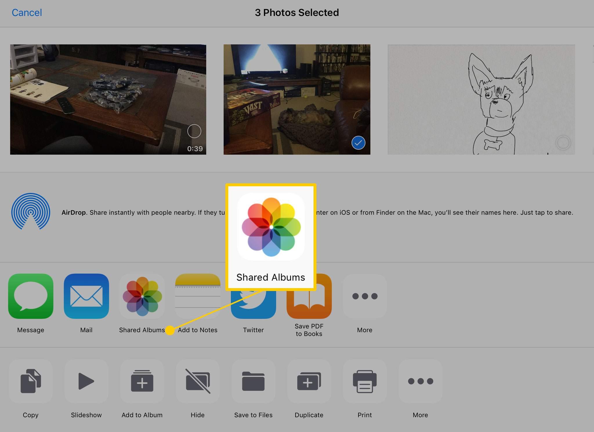 Shared Albums on iPad