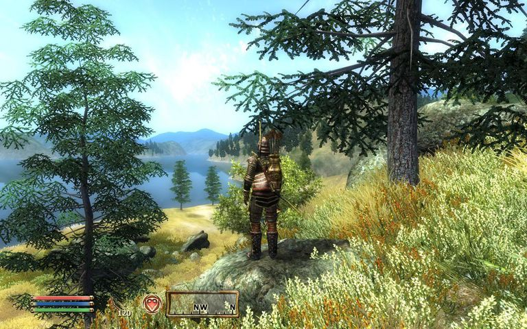 Character standing on a hill in The Elder Scrolls IV: Oblivion