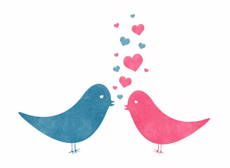 Two Watercolor Love Birds with Hearts