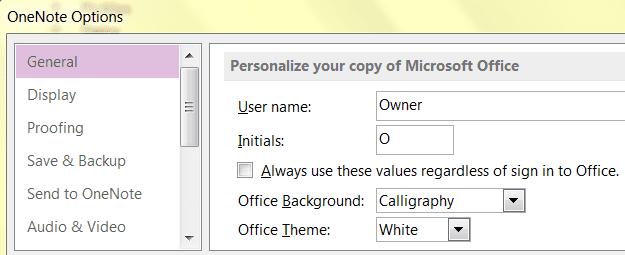 Screenshot of Personalization Settings in Microsoft OneNote 2013