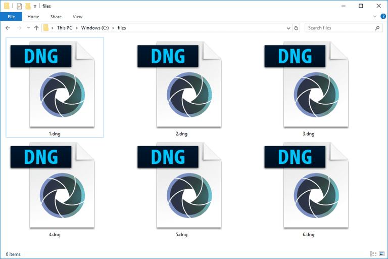 Screenshot of several DNG files in Windows 10