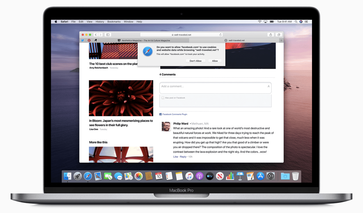 Safari browser asking to allow Facebook to use cookies and website data
