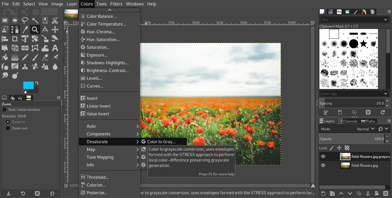 GIMP desaturate layer