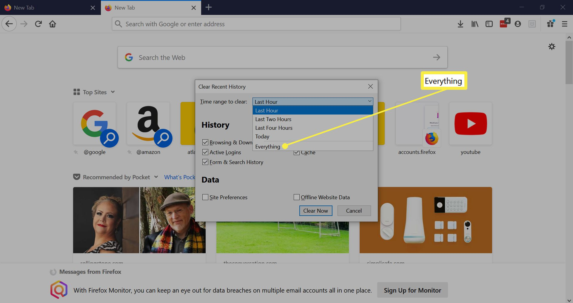 Clear Recent History options in Firefox.